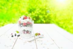 Zdrowy śniadanie: płatowaty dessrt jogurtu parfait z świeżymi malinkami i czarnym rodzynkiem na drewnianym stole nad ogródem fotografia stock