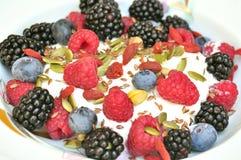 Zdrowy śniadanie z czernicami, czarnymi jagodami i malinkami, Fotografia Stock
