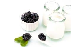 Zdrowy śniadanie z jogurtem i czernicą dieting, świeżość zdjęcie royalty free