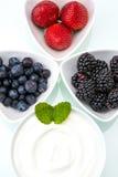 Zdrowy śniadanie z jogurtem i jagodą dieting, świeżość obraz royalty free