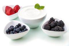 Zdrowy śniadanie z jogurtem i jagodą dieting, świeżość fotografia royalty free