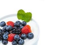 Zdrowy śniadanie z jogurtem i jagodą dieting, świeżość, minuta obraz royalty free