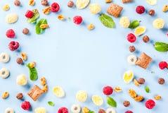 Zdrowy śniadaniowy składnika pojęcie Zdjęcie Stock