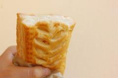 zdrowy ciasta pasztecika chuchu szpinak Zdjęcie Stock