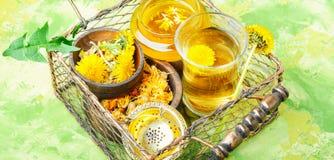 Zdrowy dandelion miód, herbata i zdjęcie stock