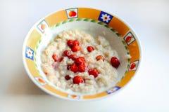 Zdrowy Domowej roboty Oatmeal z jagodami Zdjęcia Royalty Free