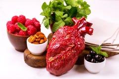 Zdrowy jedzenia i serca model jagod dokrętki streszczenie medyczny Zdjęcia Stock