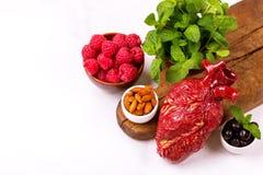 Zdrowy jedzenia i serca model jagod dokrętki streszczenie medyczny Fotografia Stock