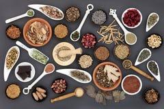 Zdrowy jedzenie dla kobiet Zdjęcia Stock
