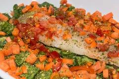 Zdrowy jedzenie, kompilaci ryba z warzywami Obraz Stock