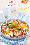 Zdrowy jedzenie - sałatka z warzywami i chałupa serem Fotografia Royalty Free