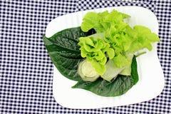 Zdrowy karmowy pojęcie, Świeżych warzyw wiosny rolki Zdjęcie Stock