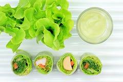 Zdrowy karmowy pojęcie, Świeżych warzyw wiosny rolki Obraz Royalty Free