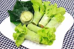 Zdrowy karmowy pojęcie, Świeżych warzyw wiosny rolki Zdjęcia Stock