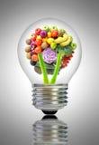 Zdrowy karmowy pomysłu pojęcie Obraz Stock