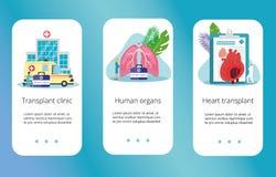 Zdrowy Ludzki Organowy dawca royalty ilustracja