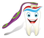 zdrowy molarny zębu toothbrush toothpast Obraz Royalty Free