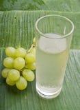 Zdrowy odświeżający gronowy sok Obrazy Stock