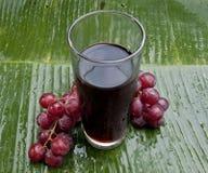 Zdrowy odświeżający gronowy sok Fotografia Royalty Free
