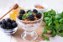 Zdrowy płatowaty deser z jogurtem, granola, czernica w szkle na drewnianym tle fotografia royalty free
