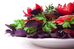 zdrowy posiłek Fotografia Stock