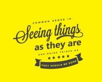 Zdrowy rozsądek widzii rzeczy i robi rzeczom gdy są, gdy muszą robić ilustracji
