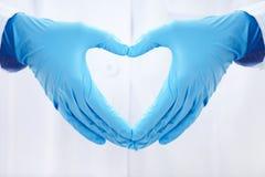 Zdrowy serce Fotografia Royalty Free