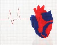 Zdrowy serce Zdjęcia Stock