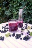 Zdrowy smoothie od jagody blackcurrant witaminy napój, lato deserów pojęcie Obrazy Royalty Free
