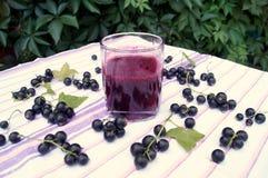 Zdrowy smoothie od jagody blackcurrant witaminy napój, lato deserów pojęcie Obraz Royalty Free