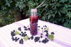 Zdrowy smoothie od jagody blackcurrant witaminy napój, lato deserów pojęcie Zdjęcia Royalty Free