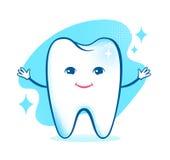 Zdrowy szczęśliwy zębu charakter Zdjęcia Stock