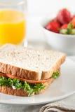 Zdrowy szybki posiłek obrazy stock