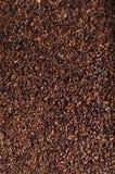 Zdruzgotane kakaowe fasole jako tło Zdjęcie Stock