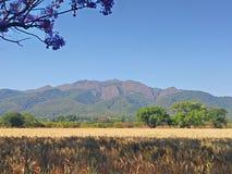 Zdumiewający krajobraz Fotografia Stock
