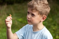 Zdziwiona chłopiec w resztkach lody konusuje w ręce obraz royalty free