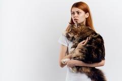 Zdziwiona kobieta ściska Maine coon kota na lekkim tle zdjęcie royalty free