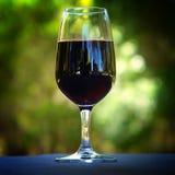 ze smakiem wina obrazy royalty free