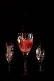 ze smakiem wina Zdjęcie Royalty Free
