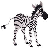 Zebra. Vector illustration shows a cheerful zebra royalty free illustration
