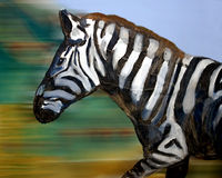Painting of zebra Royalty Free Stock Image