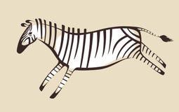 Zebra. One zebra, prehistoric, wall list Stock Photography