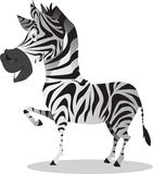 Zebra. Vector illustration of a cute zebra Stock Images