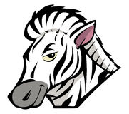 Zebra. Cartoon illustration of a zebra Stock Photos