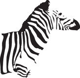 Zebra. A silhouette of a half body of a zebra stock illustration
