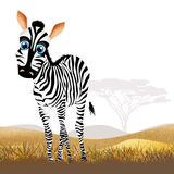 Zebra in African landscape Royalty Free Stock Image