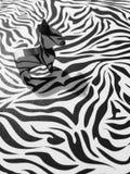Zebra ajustada na zebra-como o fundo imagens de stock