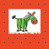 Zebra al gusto di frutta Fotografie Stock Libere da Diritti