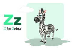 Zebra  with alphabet Royalty Free Stock Images