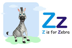 Zebra  with alphabet Stock Images